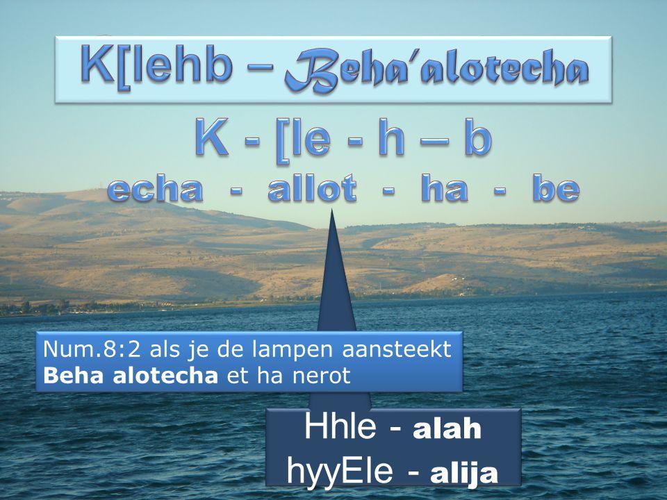 K[lehb – Beha'alotecha